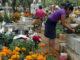 Más de 200 cementerios permanecerán cerrados 1 y 2 de noviembre.